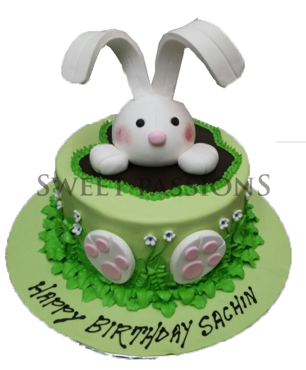 Bunny Out Of A Cake
