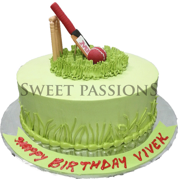 Cute Cricket Cake